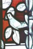 Fenstervogel